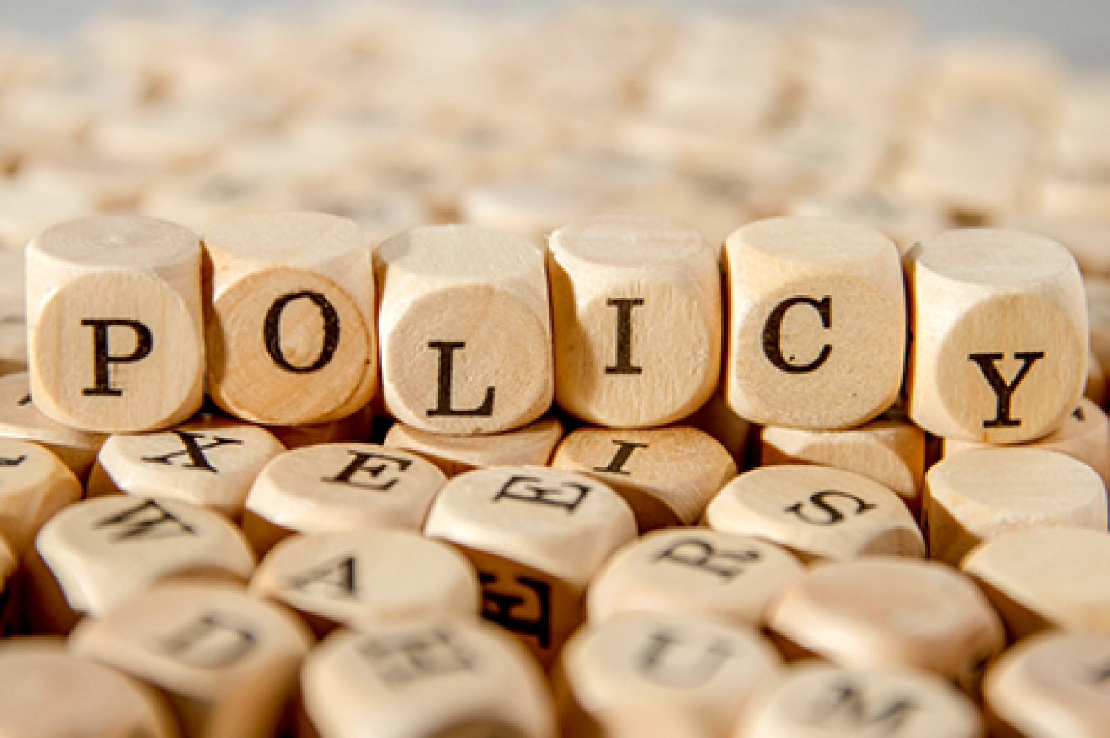 Policy Briefs and Papers